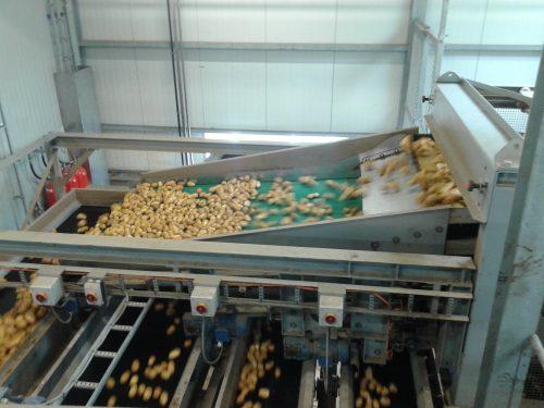 SWEPCO Food Grade Oils